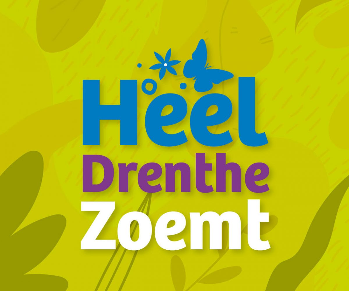 Welkom op Heel Drenthe Zoemt 2.0