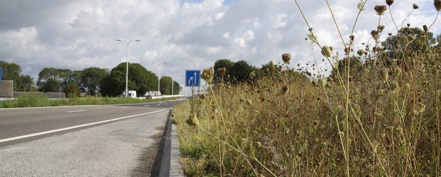 Zuid-Holland geeft het goede voorbeeld met maaibeleid